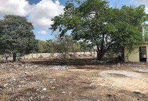 Foto de terreno habitacional en renta en  , paraíso, mérida, yucatán, 13811366 No. 01
