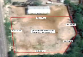 Foto de terreno habitacional en renta en  , paraíso, mérida, yucatán, 14259773 No. 01