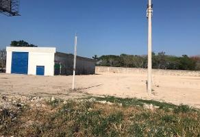 Foto de terreno habitacional en renta en  , paraíso, mérida, yucatán, 14259777 No. 01