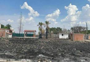 Foto de terreno habitacional en venta en paraiso tlahuica , paraíso tlahuica, ayala, morelos, 0 No. 01
