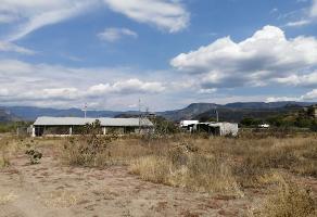 Foto de terreno habitacional en venta en paraje caballito blanco sin numero , 12 de mayo, tlacolula de matamoros, oaxaca, 10605954 No. 01