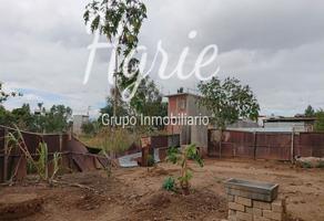 Foto de terreno habitacional en venta en  , paraje de las salinas, san andrés huayápam, oaxaca, 6138148 No. 01