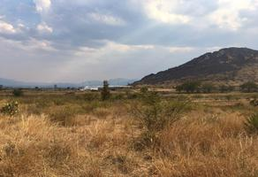 Foto de terreno habitacional en venta en paraje dexgueuzas , villa díaz ordaz, villa díaz ordaz, oaxaca, 14959535 No. 01