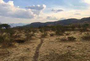 Foto de terreno comercial en venta en paraje dexgueuzas , villa díaz ordaz, villa díaz ordaz, oaxaca, 14959550 No. 01
