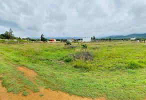 Foto de terreno habitacional en venta en paraje el aguacate s/n , san francisco lachigolo, san francisco lachigoló, oaxaca, 0 No. 01