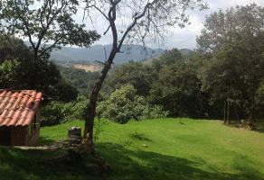 Foto de terreno industrial en venta en paraje el pasito s/n 20, santiago yancuitlalpan, huixquilucan, méxico, 7224740 No. 01