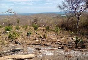 Foto de terreno habitacional en venta en paraje el tamarindo s/n , san miguel del puerto, san miguel del puerto, oaxaca, 0 No. 01