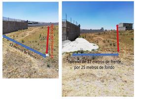 Foto de terreno habitacional en venta en paraje el tepetal s/n , san francisco tlalcilalcalpan, almoloya de juárez, méxico, 0 No. 01