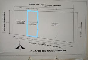 Foto de terreno habitacional en venta en  , paraje la soledad, san lorenzo cacaotepec, oaxaca, 0 No. 01