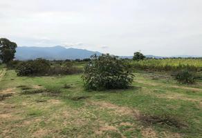 Foto de terreno habitacional en venta en paraje la tarea sin número , nazareno etla, nazareno etla, oaxaca, 8287370 No. 01