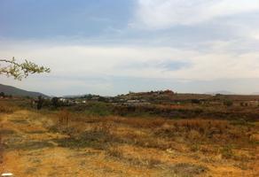Foto de terreno habitacional en venta en paraje shay s/n , san andres huayapam, san andrés huayápam, oaxaca, 0 No. 01
