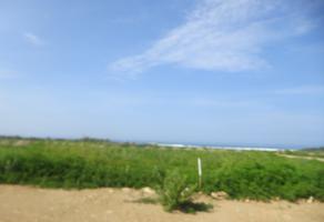 Foto de terreno habitacional en venta en paraje tierra blanca s/n , valdeflores, santa maría tonameca, oaxaca, 12811249 No. 01