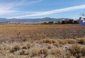 Foto de terreno habitacional en venta en paraje vichizaza , tlacolula de matamoros centro, tlacolula de matamoros, oaxaca, 0 No. 01