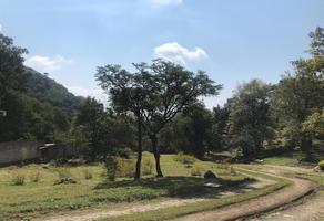 Foto de terreno habitacional en venta en paralela a camino real a jalmolonga , malinalco, malinalco, méxico, 17315641 No. 01