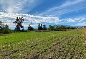 Foto de terreno habitacional en venta en parcela 15 p1/3 , villas de la hacienda, tlajomulco de zúñiga, jalisco, 11996874 No. 01