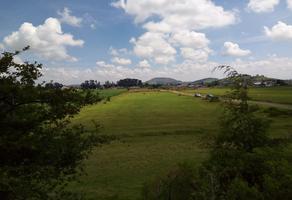 Foto de terreno habitacional en venta en parcela 1914 z1p2/32 del ejido de san francisco tlalcilalcalpan , san francisco tlalcilalcalpan, almoloya de juárez, méxico, 0 No. 01