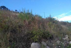 Foto de terreno habitacional en venta en parcela 59 z1p1/2 lomas del sur 59, lomas de tejeda habitacional, tlajomulco de zúñiga, jalisco, 0 No. 01