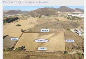 Foto de terreno comercial en venta en parcela 81, lomas de tejeda, tlajomulco de zúñiga, jalisco, 0 No. 01