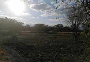 Foto de terreno habitacional en venta en parcela 91 , el fraile, montemorelos, nuevo león, 18925534 No. 01