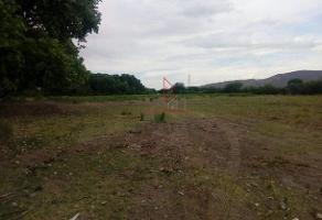 Foto de terreno habitacional en venta en parcela , aldama centro, aldama, chihuahua, 14384601 No. 01