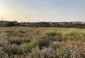 Foto de terreno habitacional en venta en parcela , campo sotelo, temixco, morelos, 0 No. 01