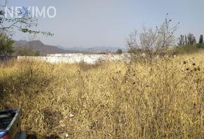 Foto de terreno comercial en venta en parcela ejido de san andres , san andrés cuauhtempan, tlayacapan, morelos, 0 No. 01