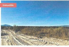Foto de terreno habitacional en venta en parcela , huaxtla, el arenal, jalisco, 6959605 No. 01