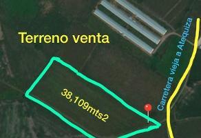 Foto de terreno comercial en venta en ejido los cedros , los cedros, ixtlahuacán de los membrillos, jalisco, 6393495 No. 01