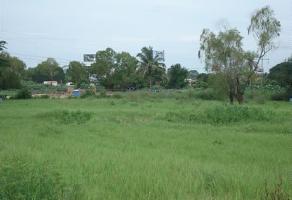 Foto de terreno habitacional en venta en parcela , puerto vallarta centro, puerto vallarta, jalisco, 4210715 No. 01