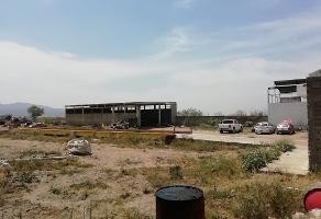 Foto de terreno habitacional en venta en parcela , tala centro, tala, jalisco, 0 No. 01