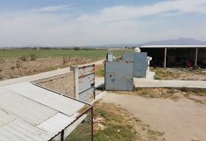 Foto de terreno habitacional en venta en parcela , tala centro, tala, jalisco, 0 No. 03