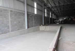 Foto de nave industrial en renta en  , parque industrial la amistad, torreón, coahuila de zaragoza, 4909503 No. 02