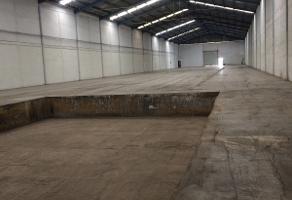 Foto de nave industrial en renta en  , parque industrial milimex, apodaca, nuevo león, 4881299 No. 01