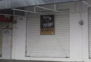 Locales en renta en Pascual Ortiz Rubio b6cbaccc4739b