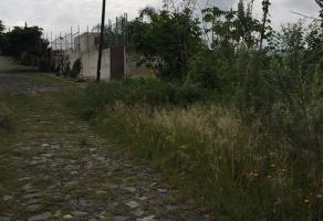 Foto de terreno habitacional en venta en paseo de la soledad , cortijo de san agustin, tlajomulco de zúñiga, jalisco, 3735025 No. 01