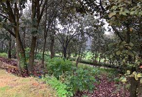 Foto de terreno habitacional en venta en paseo de la vista hermosa 183 , el palomar, tlajomulco de zúñiga, jalisco, 6107504 No. 01