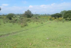 Foto de terreno habitacional en venta en paseo de las águilas sección hacienda , presa escondida, tepeji del río de ocampo, hidalgo, 4241133 No. 02