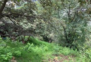 Foto de terreno habitacional en venta en paseo de las bugambilias , lomas de vista hermosa, cuajimalpa de morelos, df / cdmx, 0 No. 01