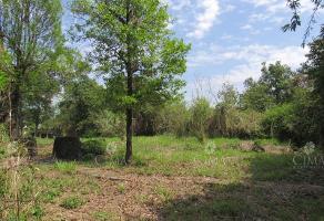 Foto de terreno habitacional en venta en paseo de las fuentes 1, las fuentes, jiutepec, morelos, 8714529 No. 01
