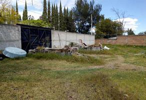 Foto de terreno habitacional en venta en paseo de las garzas s/n , buenavista, ixtlahuacán de los membrillos, jalisco, 12497155 No. 01