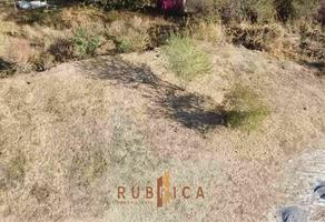 Foto de terreno habitacional en venta en paseo de las orquídeas , comala, comala, colima, 0 No. 01