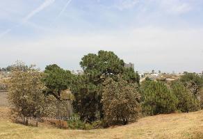 Foto de terreno habitacional en venta en paseo de los andes , cumbres, zapopan, jalisco, 0 No. 06