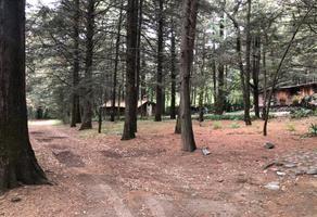 Foto de terreno habitacional en venta en paseo de los cedros 0, ex-hacienda jajalpa, ocoyoacac, méxico, 0 No. 01