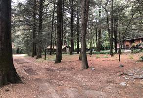 Foto de terreno habitacional en venta en paseo de los cedros 15 , ex-hacienda jajalpa, ocoyoacac, méxico, 0 No. 01