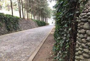 Foto de terreno habitacional en venta en paseo de los cedros 15, ex-hacienda jajalpa, ocoyoacac, méxico, 0 No. 01
