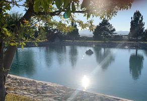 Foto de terreno habitacional en venta en paseo de los pavorreales 555, loma bonita, arteaga, coahuila de zaragoza, 18647251 No. 02