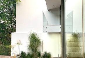 Foto de casa en venta en paseo de los virreyes 4300, villa universitaria, zapopan, jalisco, 11531977 No. 04
