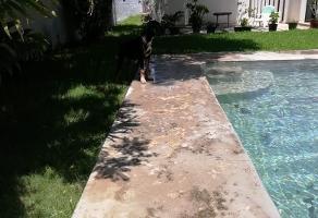 Foto de terreno habitacional en renta en  , paseo de montejo, mérida, yucatán, 11884902 No. 01