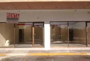 Foto de local en renta en  , paseo de montejo, mérida, yucatán, 14370286 No. 01