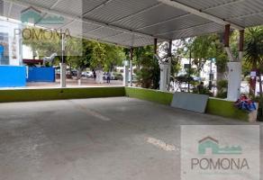 Foto de local en renta en  , paseo de montejo, mérida, yucatán, 7545255 No. 01